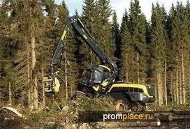 Лесозаготовительная техника: сбор и первичная обработка леса, механизация труда