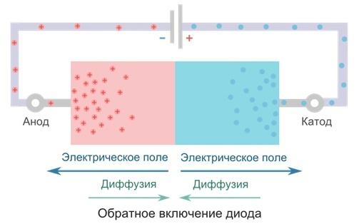 Полупроводниковый диод: виды, как работает и область применения