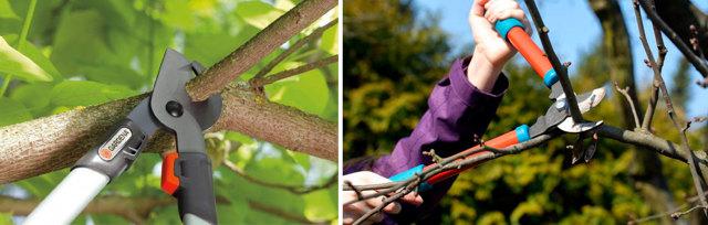 Преимущества, возможности и разновидности электроножовок для обрезки дерева, критерии выбора