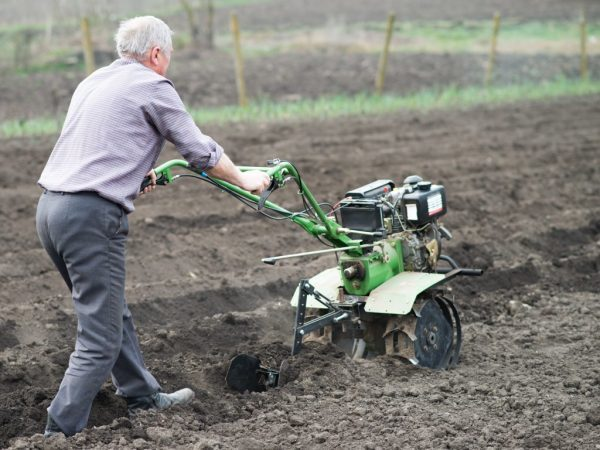 Посадка картофеля при помощи мотоблока: использование окучника и картофелесажалки, нарезка борозд обработка