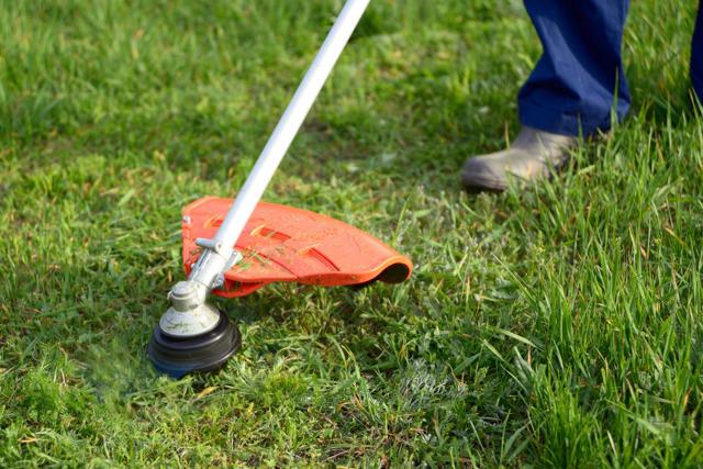 Электрический триммер: какой лучше выбрать для стрижки газона на даче