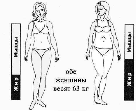 Расчёт веса: калькулятор определения массы тела и избыточного веса