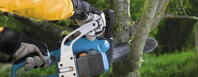 Рекомендации по выбору марки бензопилы для дачи и частного дома, характеристики инструмента, цены и качество