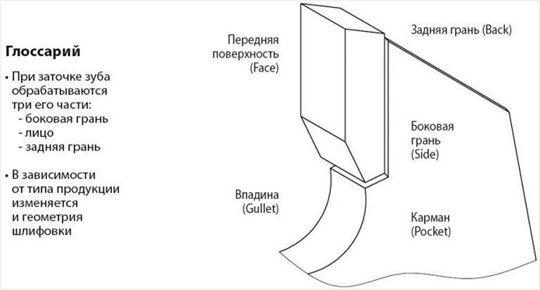 Пильный диск: классификация и характеристика полотен для чистого реза по дереву